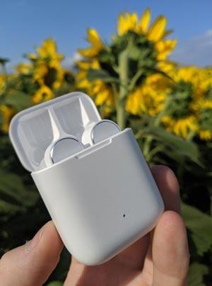 Xiaomi True Mi Wireless в кейсе